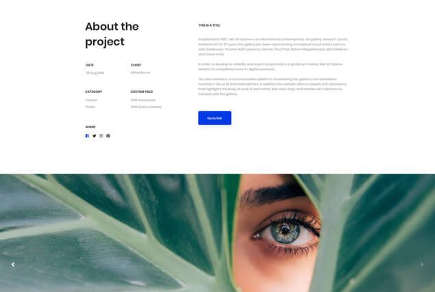 landing-page-single-portfolio-layout-10